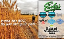 Early's Voted the BEST, By you and your pets!