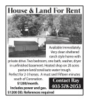 House & Land For Rent: Very clean sheltered ranch style home with private drive